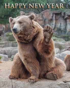 bear market 2019